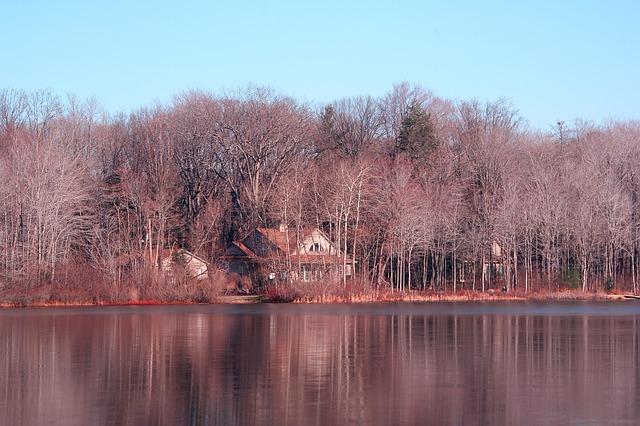 jezero, stromy, dům v lese