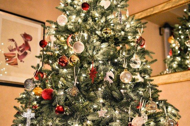 vánoční stromek.jpg