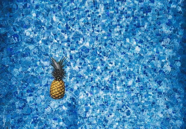 ananas v bazénu.jpg