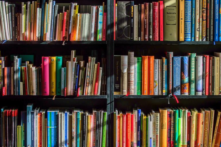 Knihovna plná knih